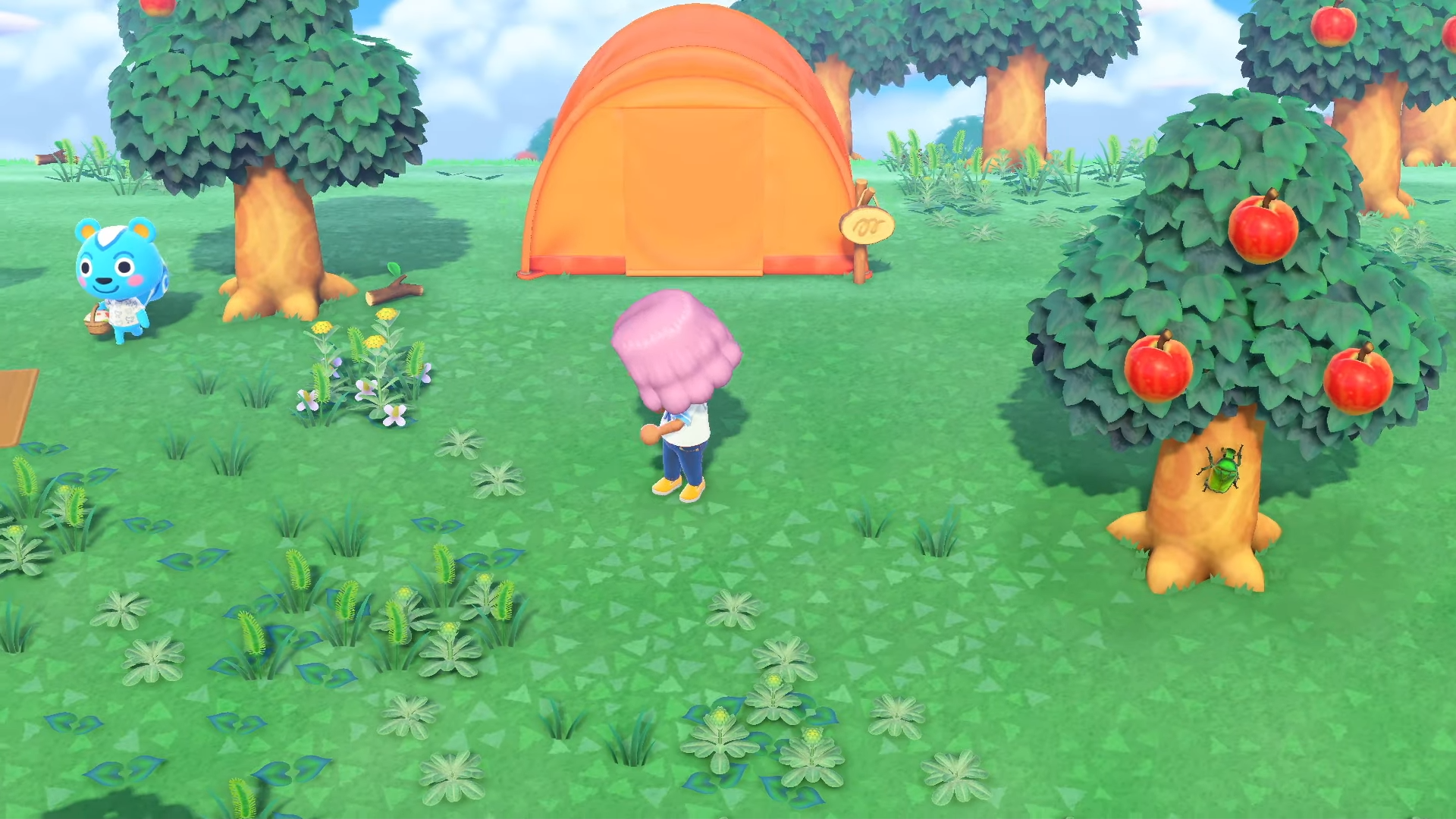 Insecte ressemblant au nitidule, Animal Crossing: New Horizons
