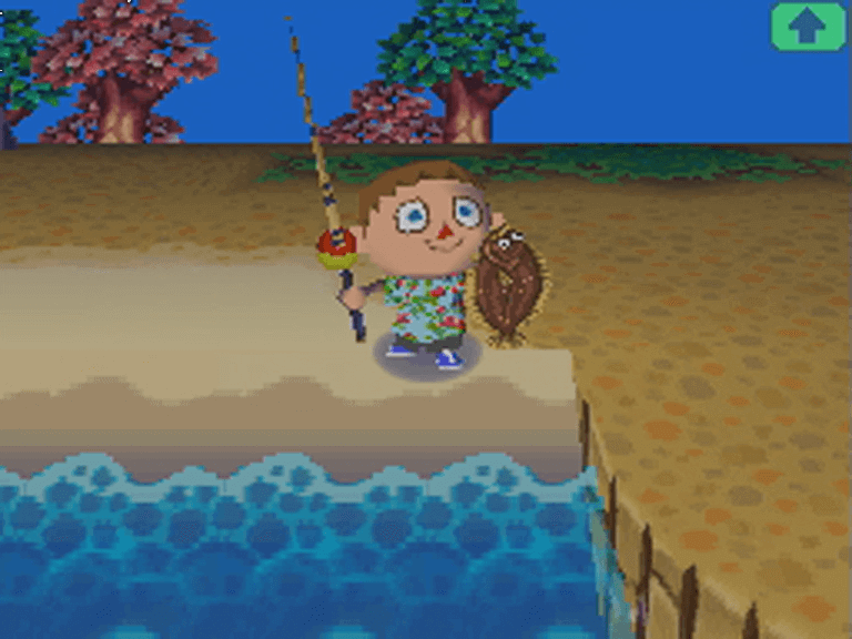 En train de pêcher, Animal Crossing : Wild World