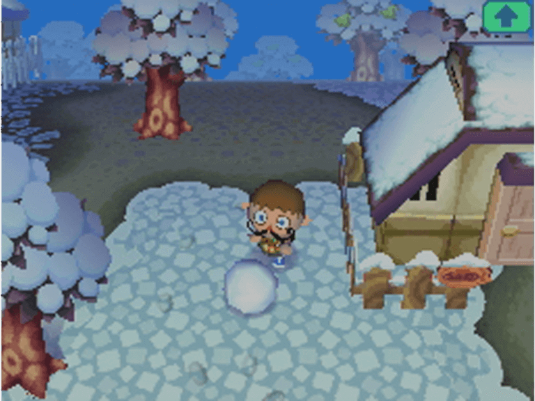 Hiver, Animal Crossing : Wild World
